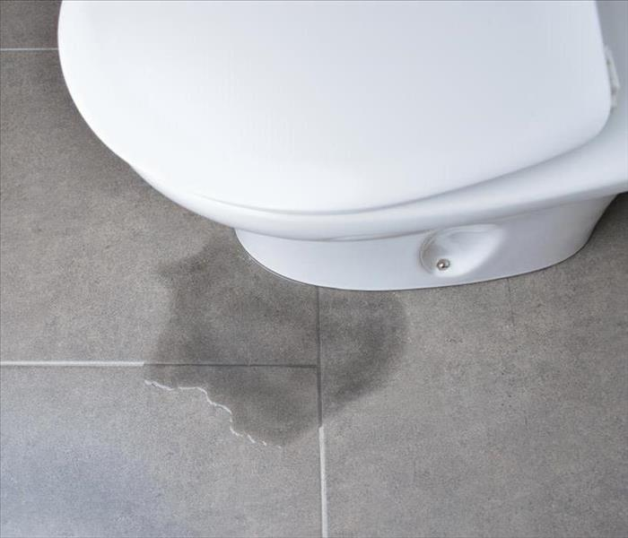 Water Damage Steps for Replacing a Leaking Toilet